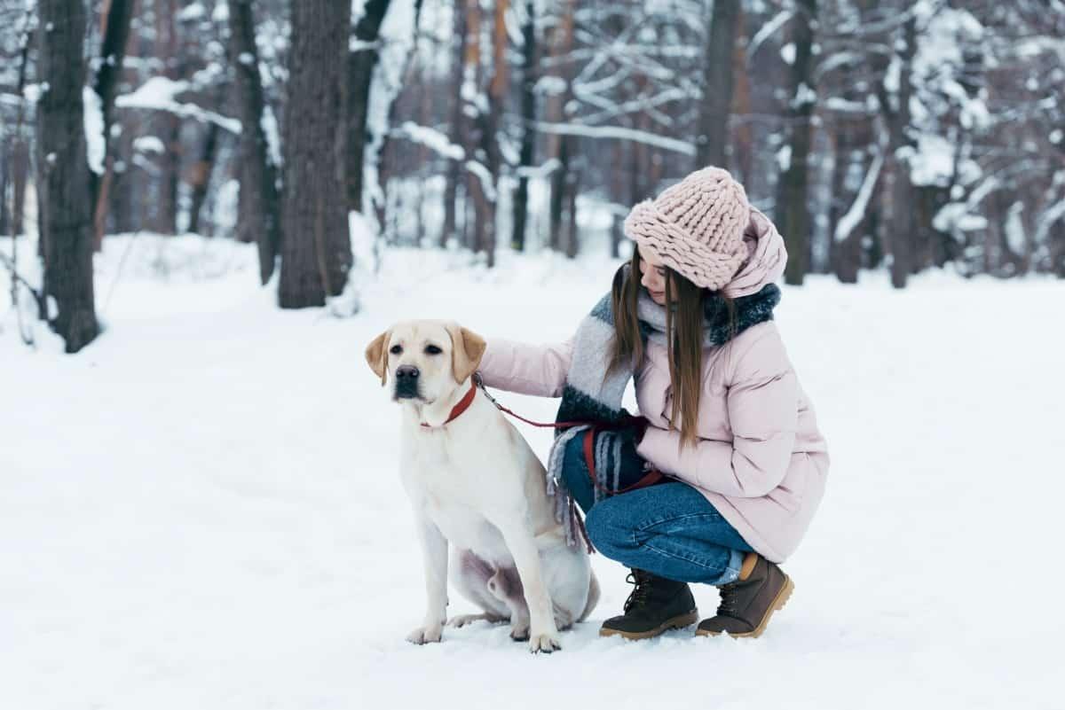 Можно ли гулять при простуде